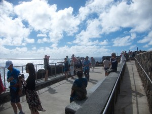 Lots of people at the blowhole