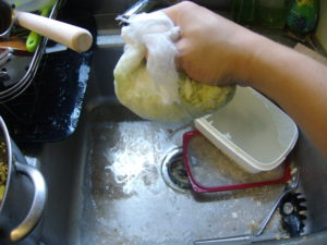 Straining the cabbage